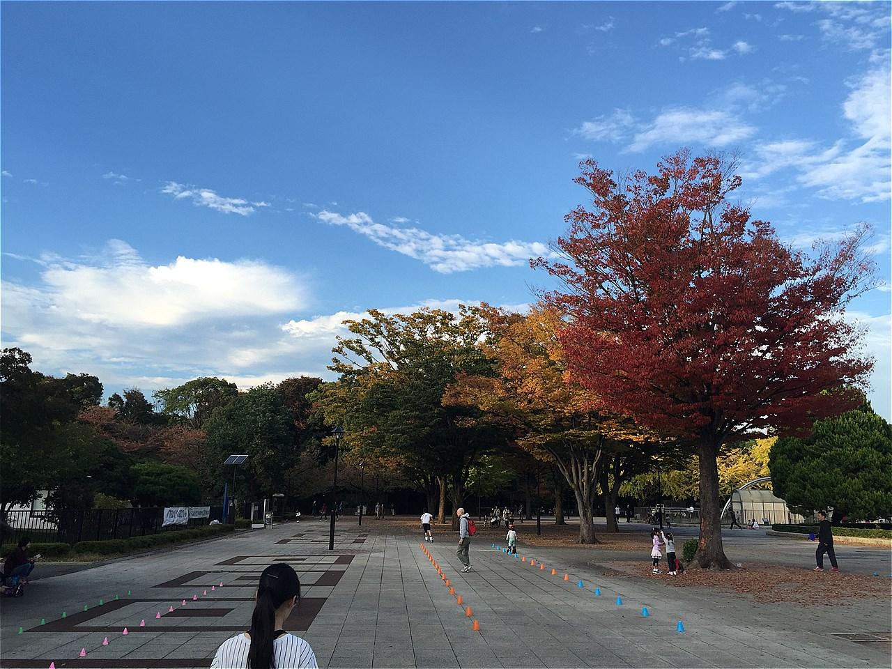 20171103_光が丘 (7)