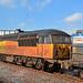 <p><a href=&quot;http://www.flickr.com/people/britishrail1980sand1990s/&quot;>British Rail 1980s and 1990s</a> posted a photo:</p>&#xA;&#xA;<p><a href=&quot;http://www.flickr.com/photos/britishrail1980sand1990s/37480264040/&quot; title=&quot;56096 3S71 Chester&quot;><img src=&quot;http://farm5.staticflickr.com/4452/37480264040_bb82810650_m.jpg&quot; width=&quot;240&quot; height=&quot;160&quot; alt=&quot;56096 3S71 Chester&quot; /></a></p>&#xA;&#xA;<p>56113 / 56096 at Chester on 3S71 19:43 Shrewsbury Coleham - Shrewsbury Coleham RHTT on 16/10/17.</p>
