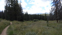 Segment 6, Colorado Trail, near Breckenridge, CO15