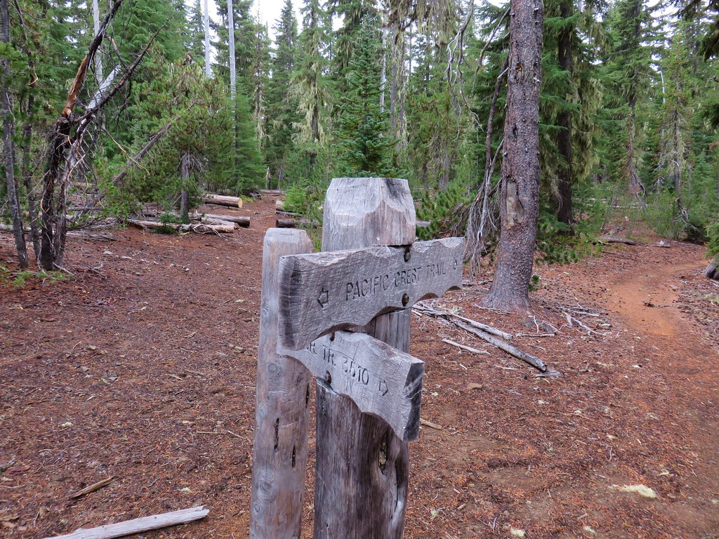 Pacific Crest Trail junction with the Winopee Lake Trail