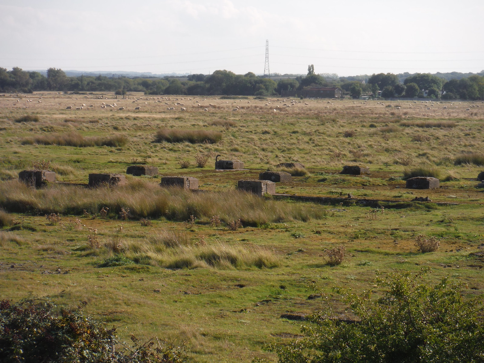 Concrete Blocks (remnants of brickworks) SWC Walk 299 - Teynham to Faversham