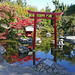 Rouge Reflection at Japanese Garden-10-16-17