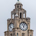 Liver Bird - Liver Building  - River Mersey, Liverpool. UK.