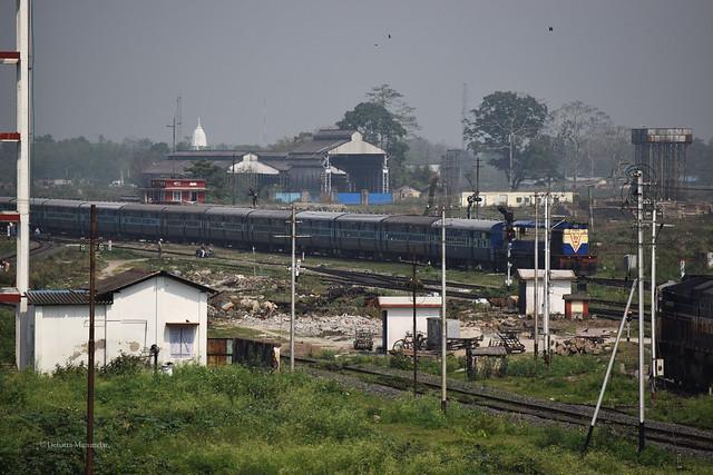 Haldibari Passenger