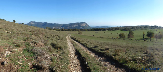 Solsonès 2017 - Exc 05 - Pla de Busa -05- Pla del Rial -13- PLano de El Coscoller y al fondo los Fraus de Vilella