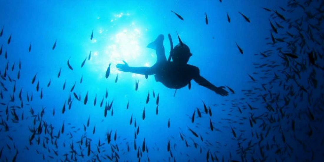 Asinara-scuba-diving