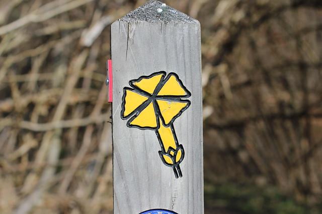 Wegzeichen im Kellerwald