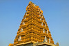 Nanjangud Temple Tower
