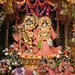 Darshan from IMG_6364