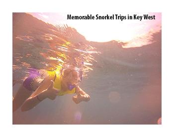 Coral Head Adventures FL Key West Trips Snorkel