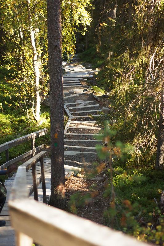 Oulangan kansallispuisto, Pieni Karhunkierros | Oulanka National Park, Small Bear's Trail