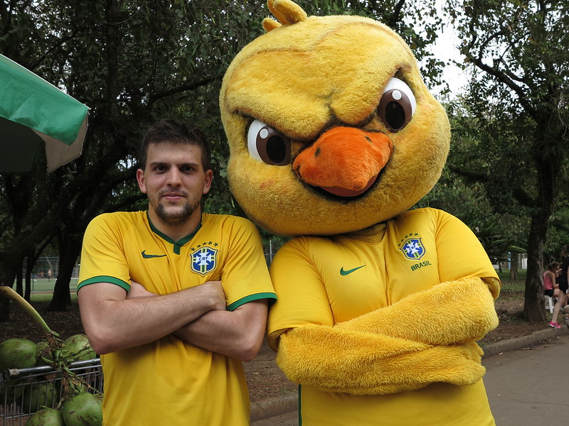 Canarinho no Parque do Ibirapuera