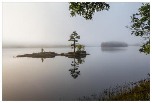maine topsham fog morning islet island androscoggin river