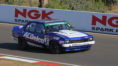 Triple Ply TORANA