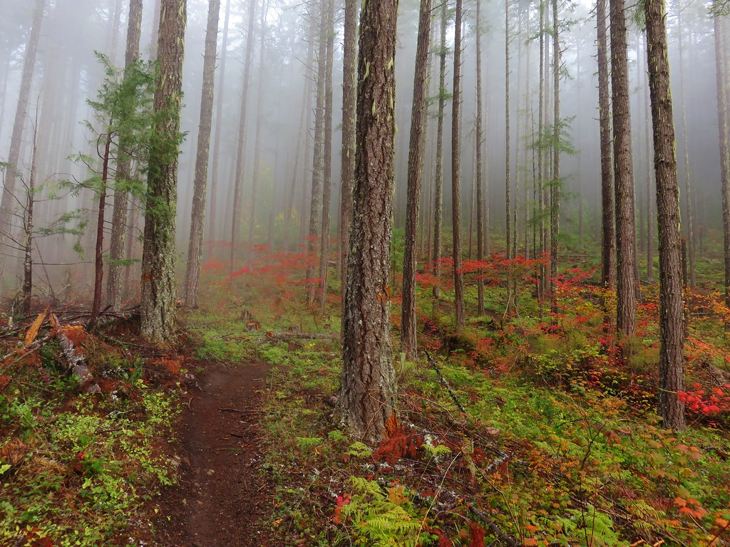 Dead Mountain Trail