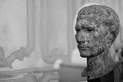 Face of an Emperor