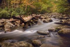 Smokey_Mountains_8780