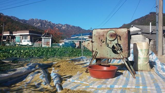 가을아침 | 탈곡송풍기