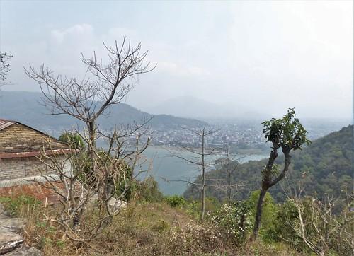 n-pokhara-Pagode-Paix (11)