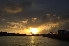 Golden Preston Docks