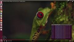 ubuntu-30-4k-temperature