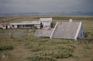 Skokholm observatory from the Knoll. Woodsage 1961