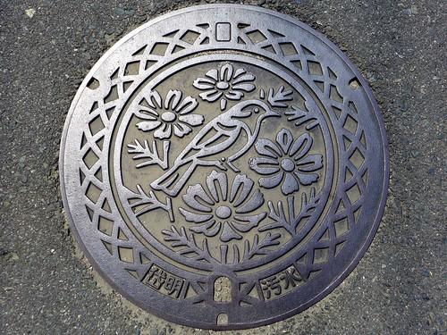 Taimei Kumamoto, manhole cover (熊本県岱明町のマンホール)