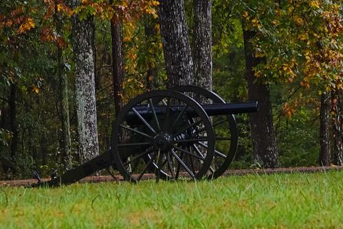 Georgia Parrott Gun