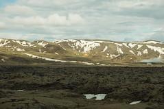 Skaftarhruan Mossy Lava Field