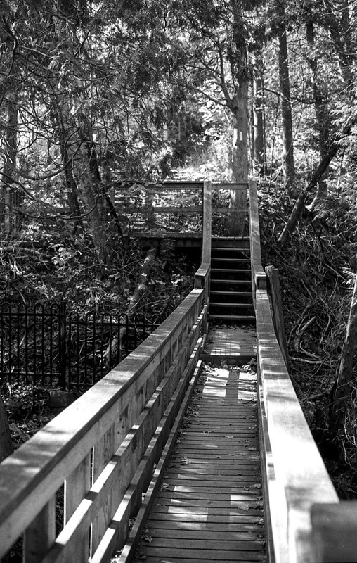 Black Creek Foot Bridge_