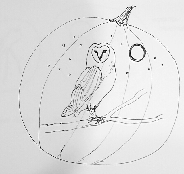 owl pumpkin sketch