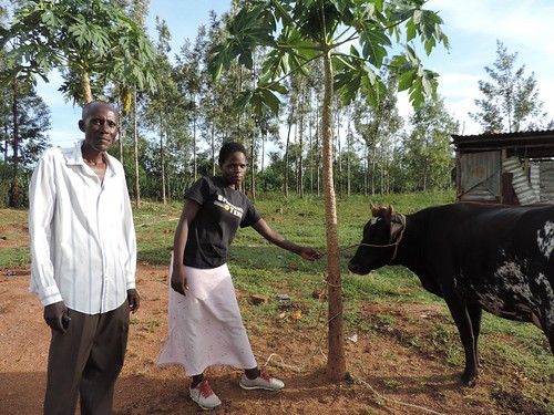 Bernardus Agumba stands with Selvin Odhiambo, his neighbor and relative, next to his cow in Homa Bay county, Kenya.