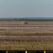 Farming in the Fields