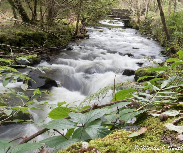 Stream north wales, Olympus E-M5MarkII, Sigma 19mm F2.8 DN | A