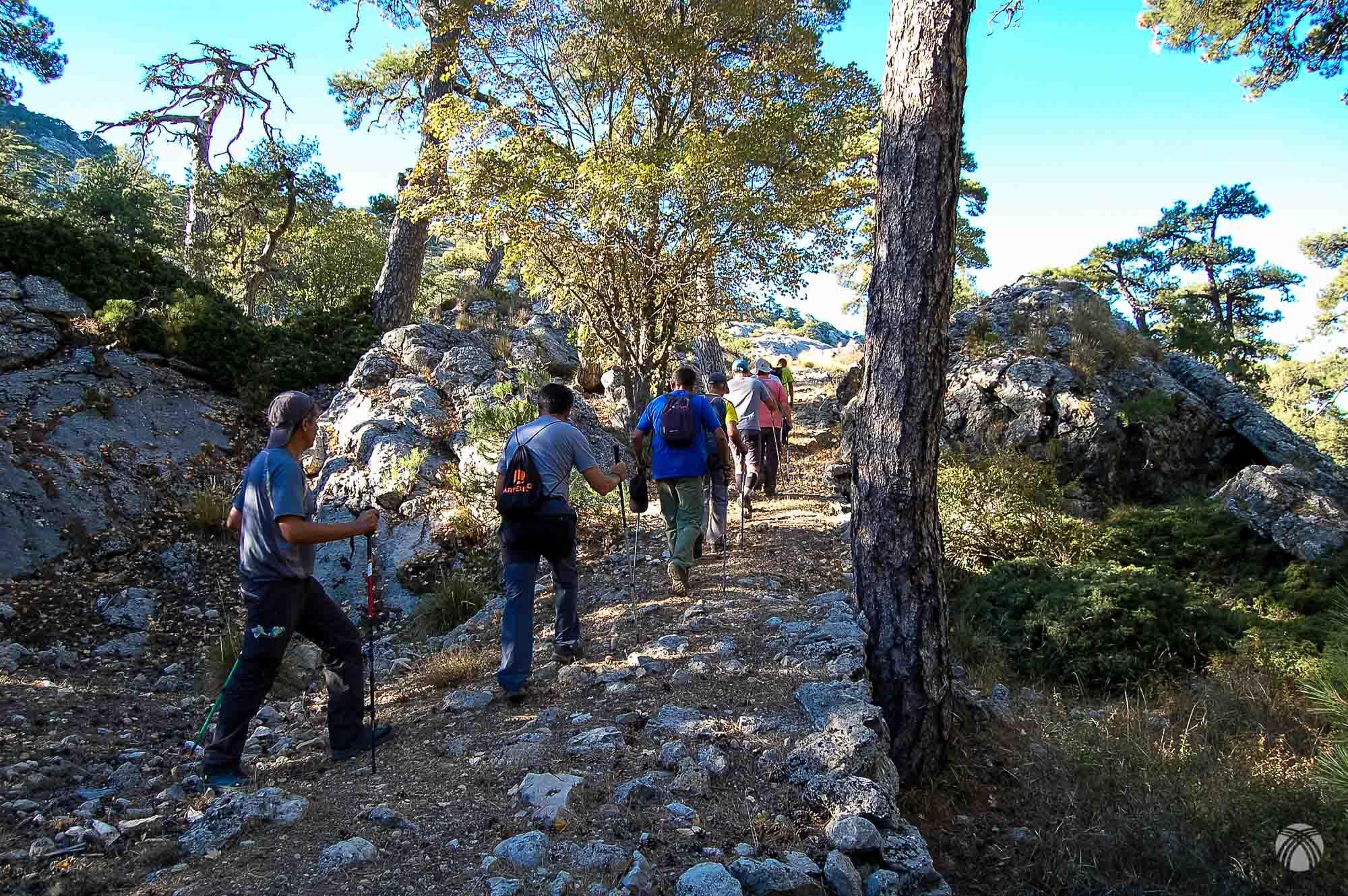 Viejo camino hacia Puerto Pinillo