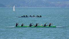 Race 5, W6 Men 26km, National Waka Ama Races, Napier, NZ - 14/10/17