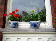 Window with Pots and Flowers