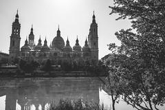 Pilar Cathedral