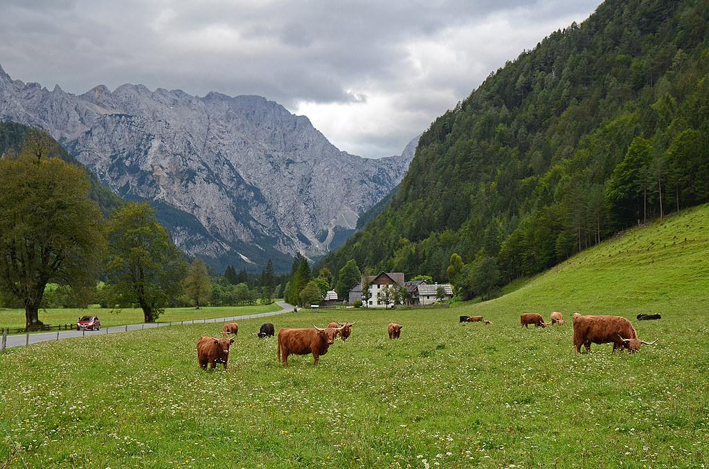 55_Slovenia_Logarska Dolina