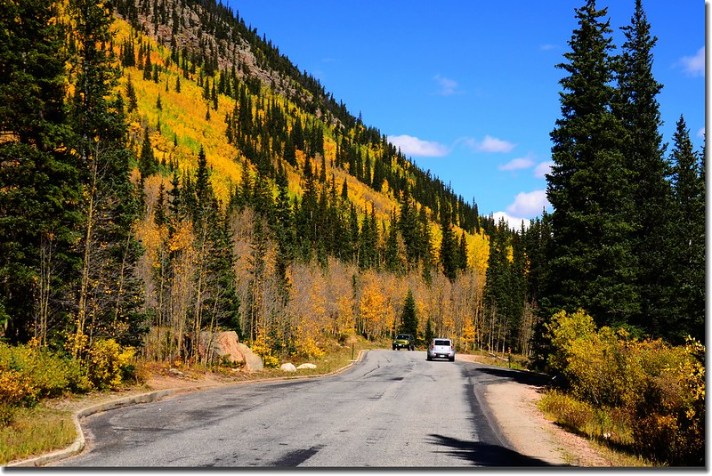 Fall colors, Guanella Pass, Colorado (19)