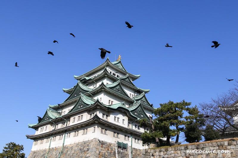 名古屋城,名古屋旅遊,日本名古屋,日本自助旅遊,日本自由行 @陳小可的吃喝玩樂