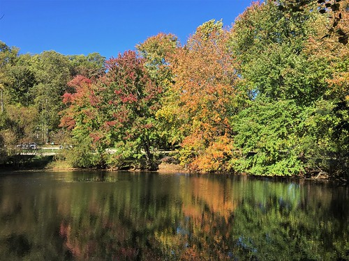 garrisonforest owingsmills maryland ponds trees fallcolors reflections iphone cmwd
