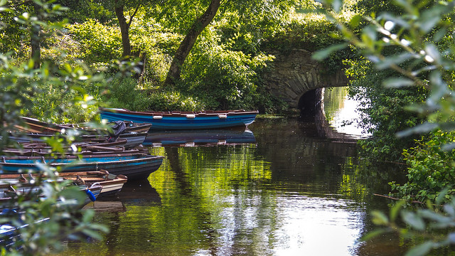 Ireland - Killarney National Park - Ross Castle and Lough Leane