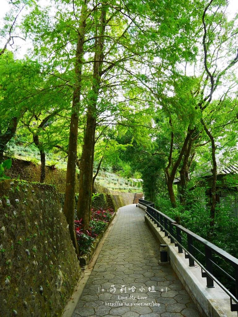 坪林老街一日遊景點茶業博物館 (1)