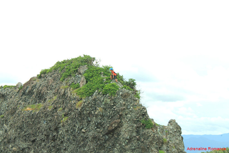 Halourd climbing a rock outcropping