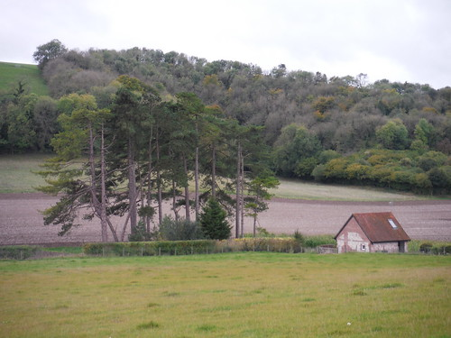 Duncoombe Cottage, East Meon