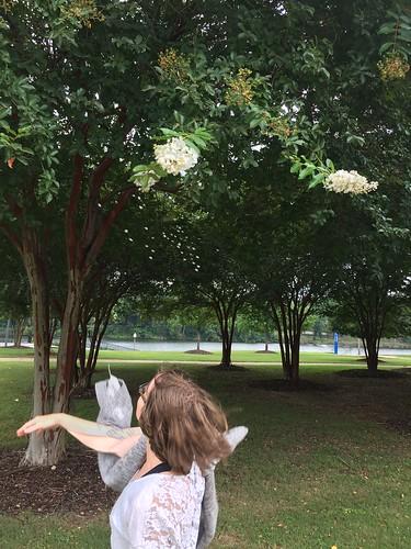 Kalypso marking petal rain with the tree flowers.