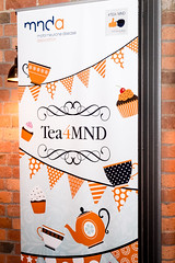 Orange tree Derby : MNDA fundraiser