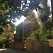 House in Highgate