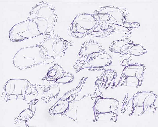 10.6.17 - Franklin Park Zoo Sketches